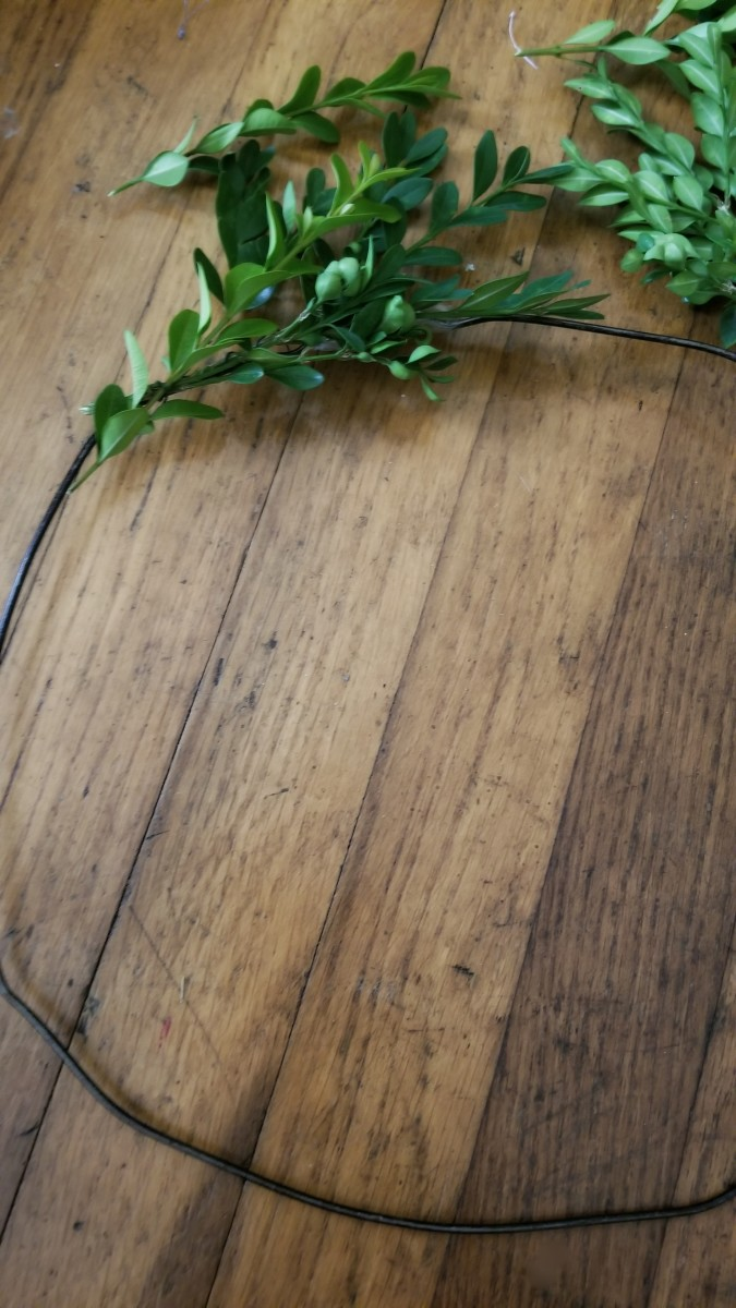 Arrange boxwood leaves around wire circle.
