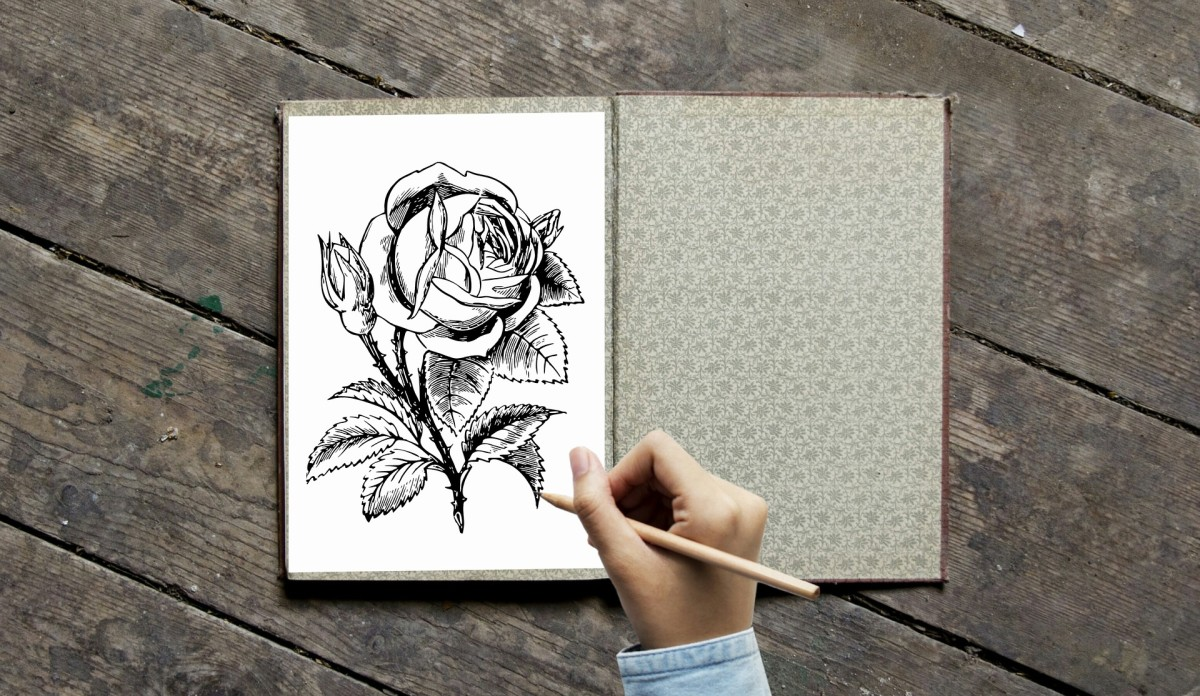 Roses are very popular flowers for landscape coloring projects. Excellent choice for blending and shading techniques.