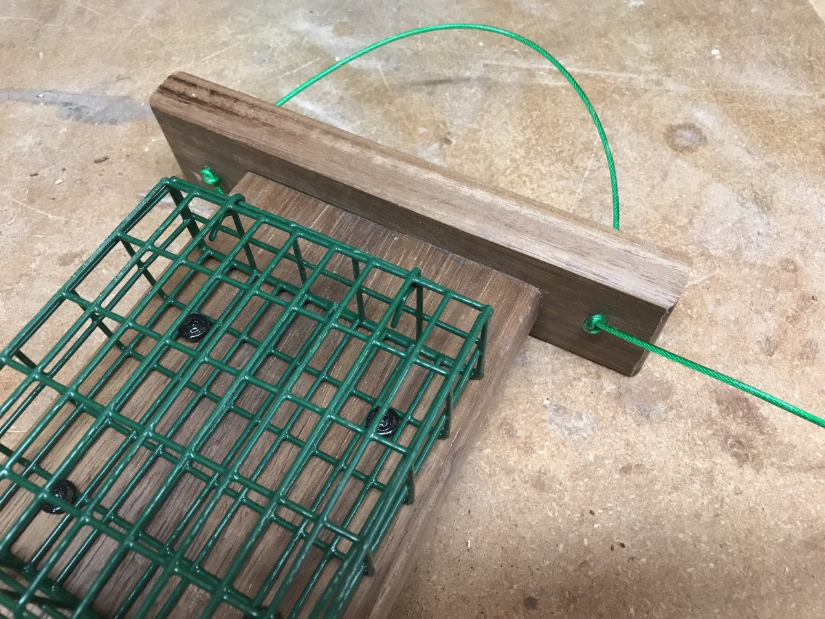 The suet feeder hangs from a short length of plastic coated cable