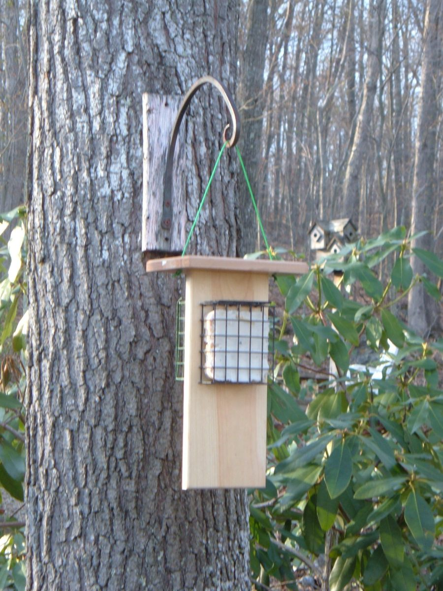 This version of the feeder features two suet cake cages with one on each side.