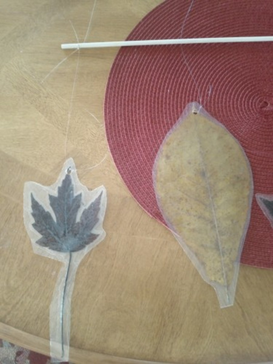 Attach leaves to a dowel with fishing line.