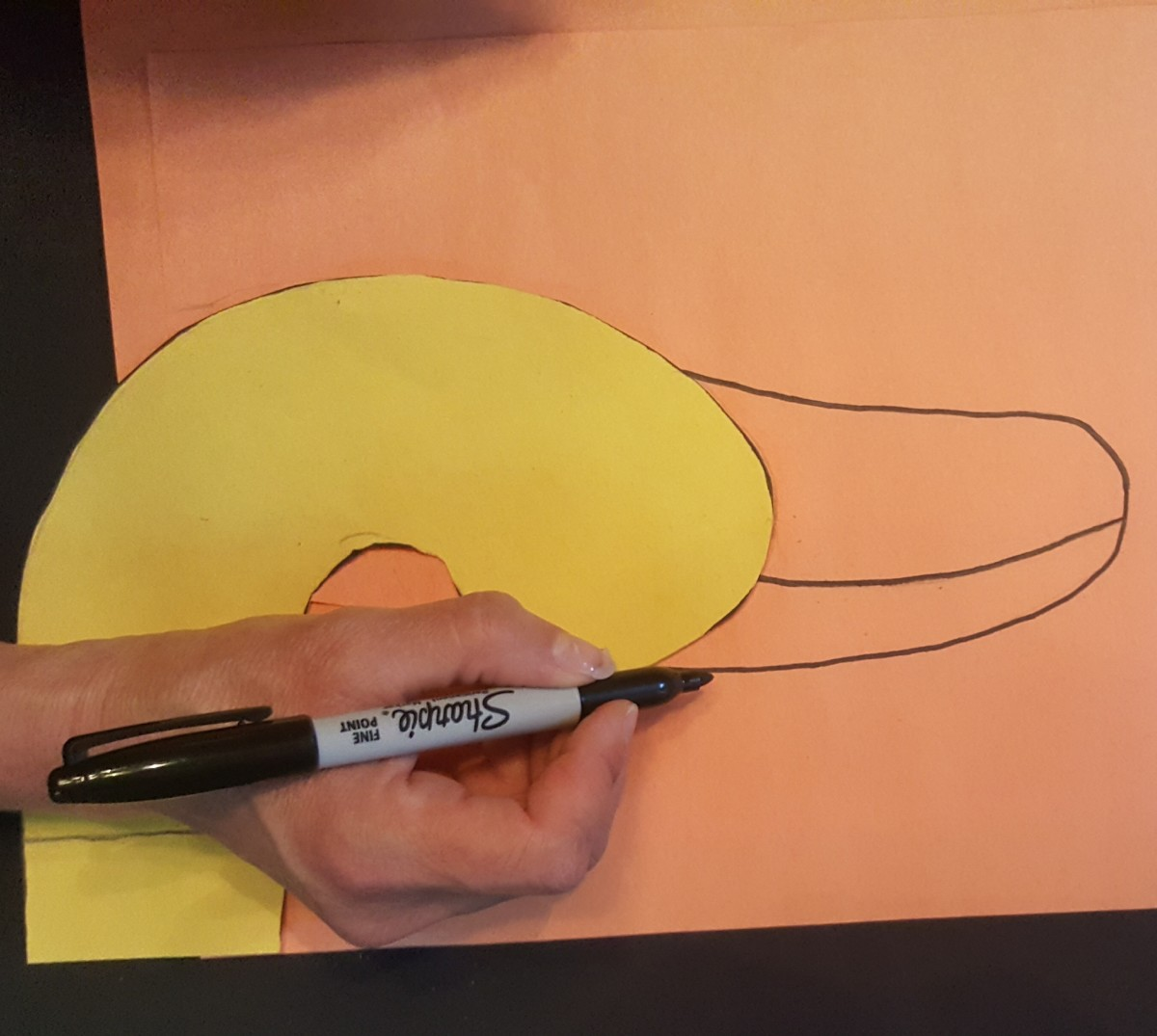 Draw The Duckbill.