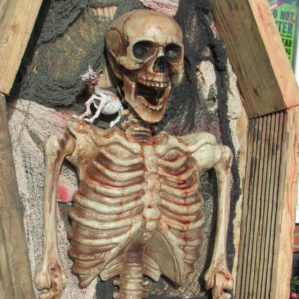Scary Skeleton for Halloween