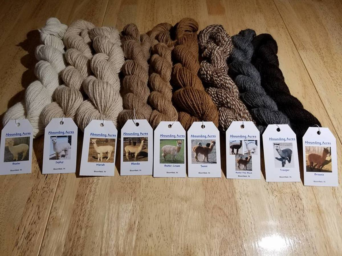 Alapca yarn comes in many beautiful natural colors.