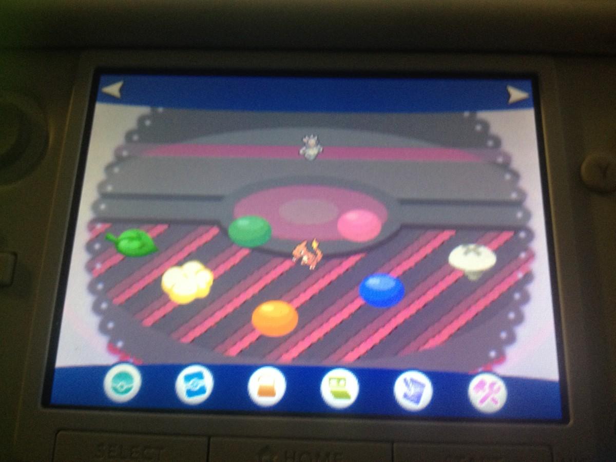 The game screen of Pokémon-Amie