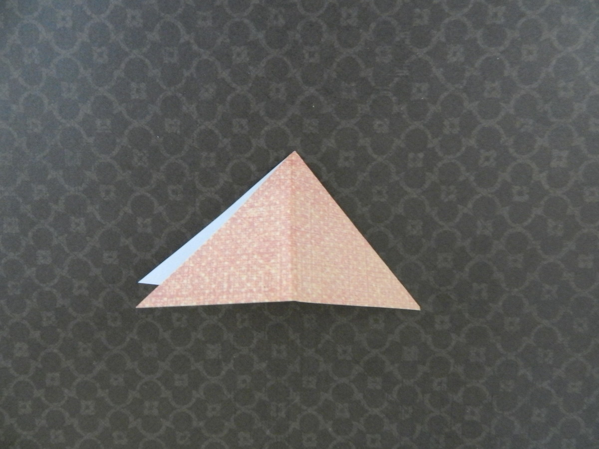 Open triangle and refold down the center at the top tip. Have the fold on the right side.