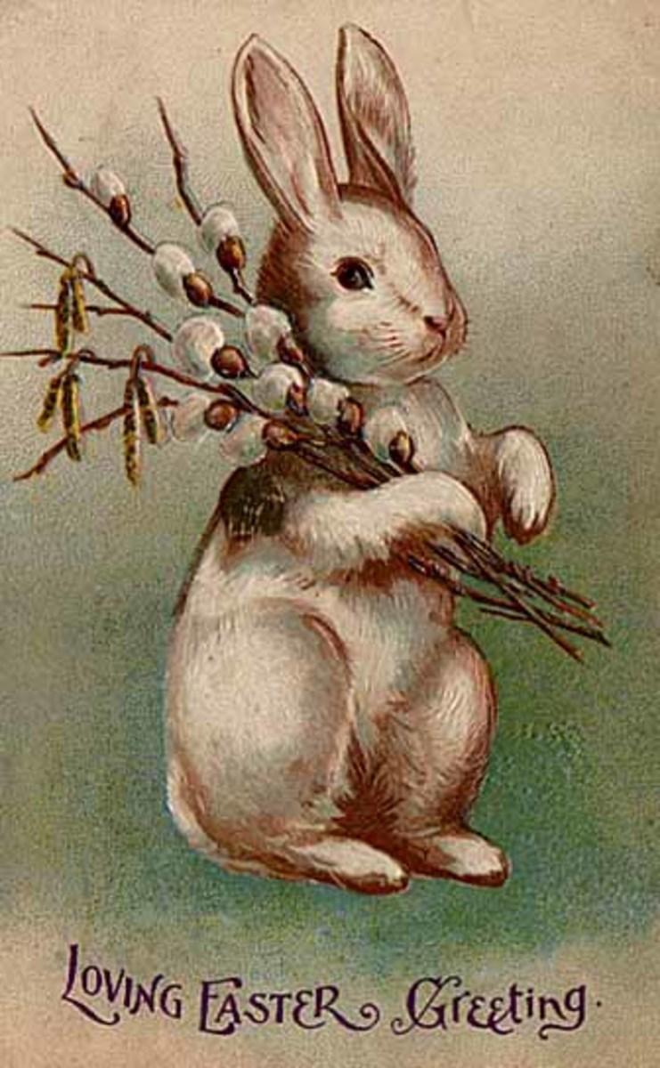 Easter Bunny Postcard 1907