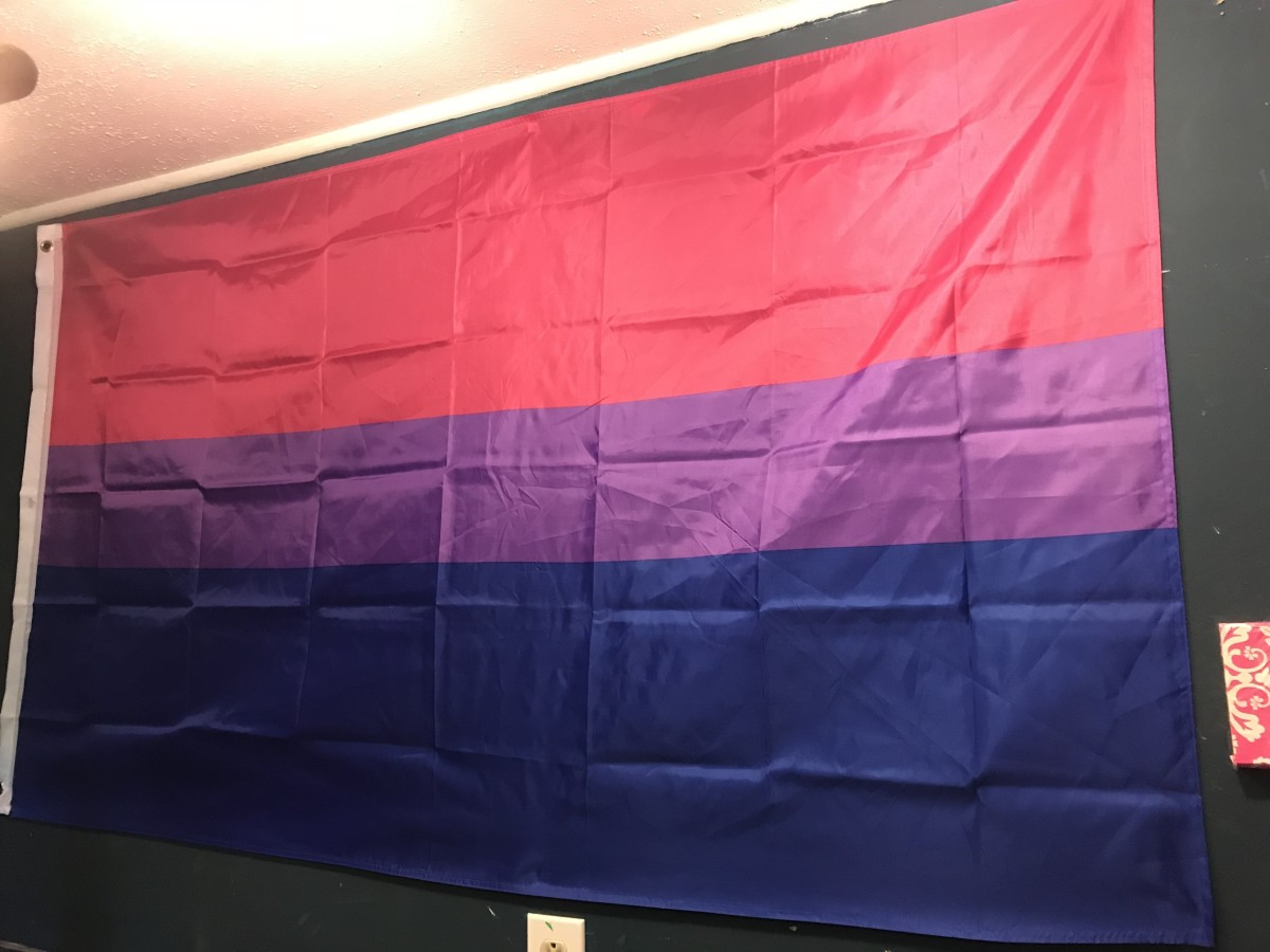 Don't be afraid to proudly display the bi pride flag on Bi Visibility Day, or on any other day.