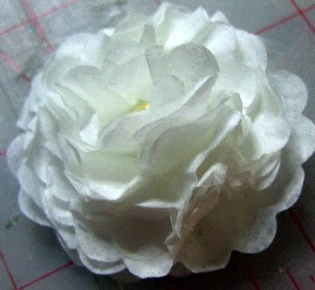 White Camilia Coffee Filter Flower