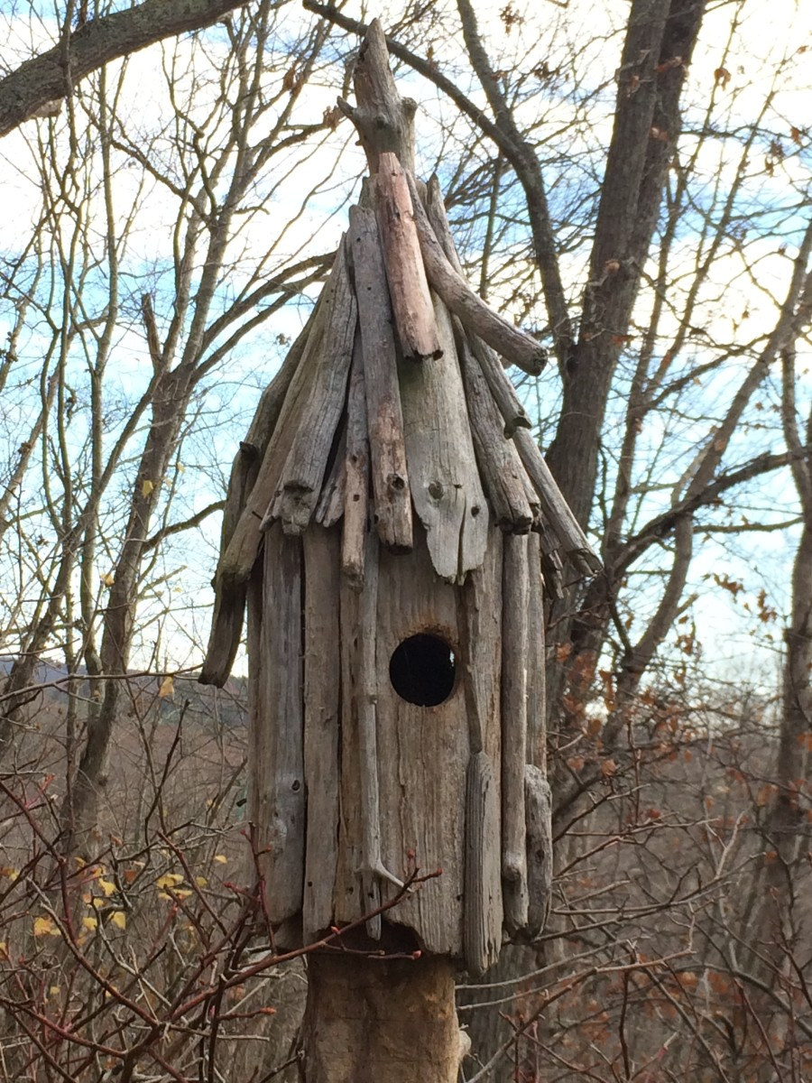 Driftwood art how to make a driftwood birdhouse feltmagnet for How to make driftwood crafts