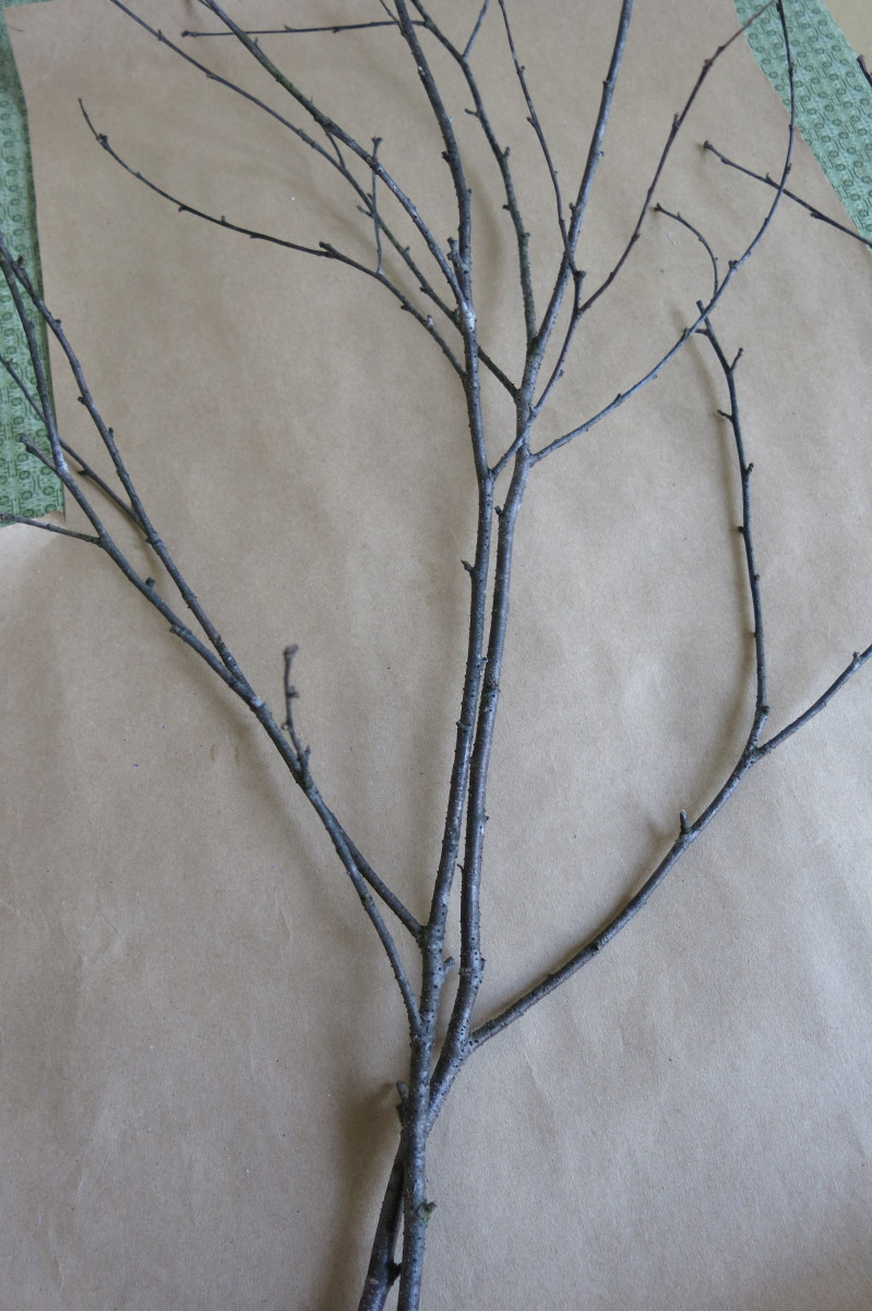 You can double up on your branches to create the shape you want for your flower display