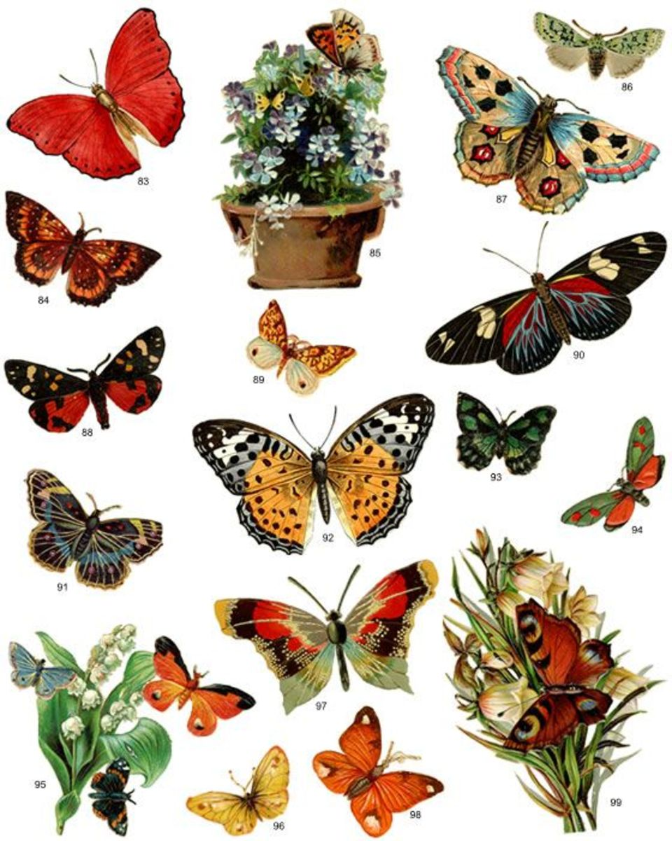 No painting skills required,- print out butterflies with a color printer, cut them out and decoupage onto your projects, easy peasy!