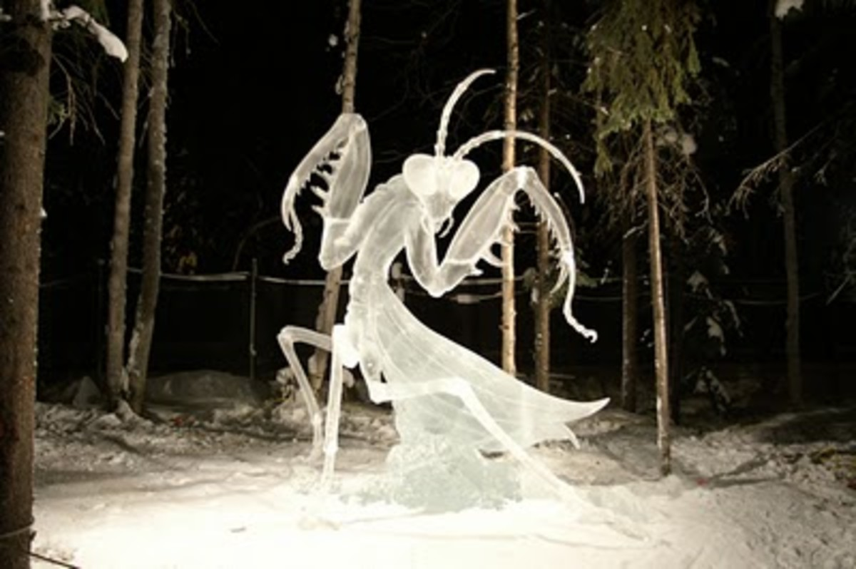 2007 World Ice Art Championships