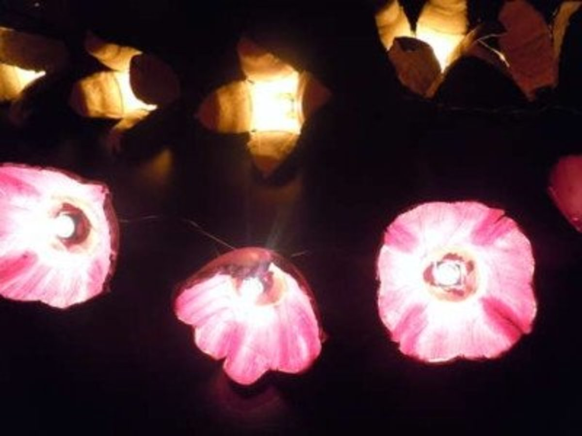 egg-carton-flower-lights