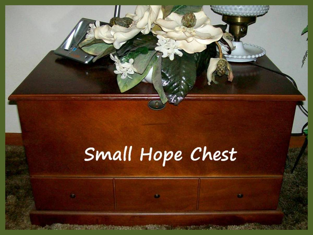 This chest is about 40 years old and currently holds more photo albums at my father's house.  Source:  Sharyn's Slant