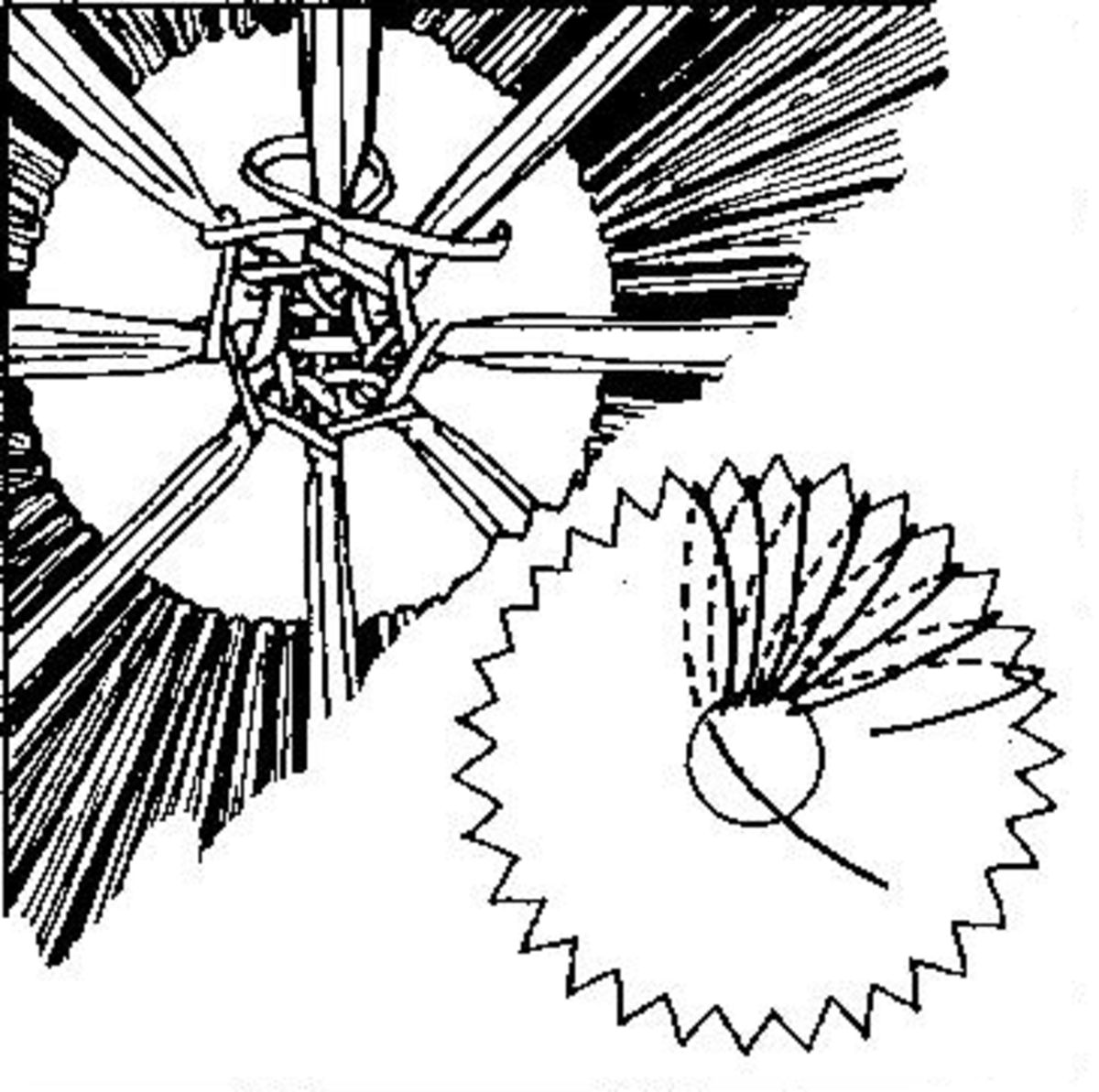 Figure 1 - Shows how to Fill in Center                                       Figure 2 - Winding raffia on serrated card loom