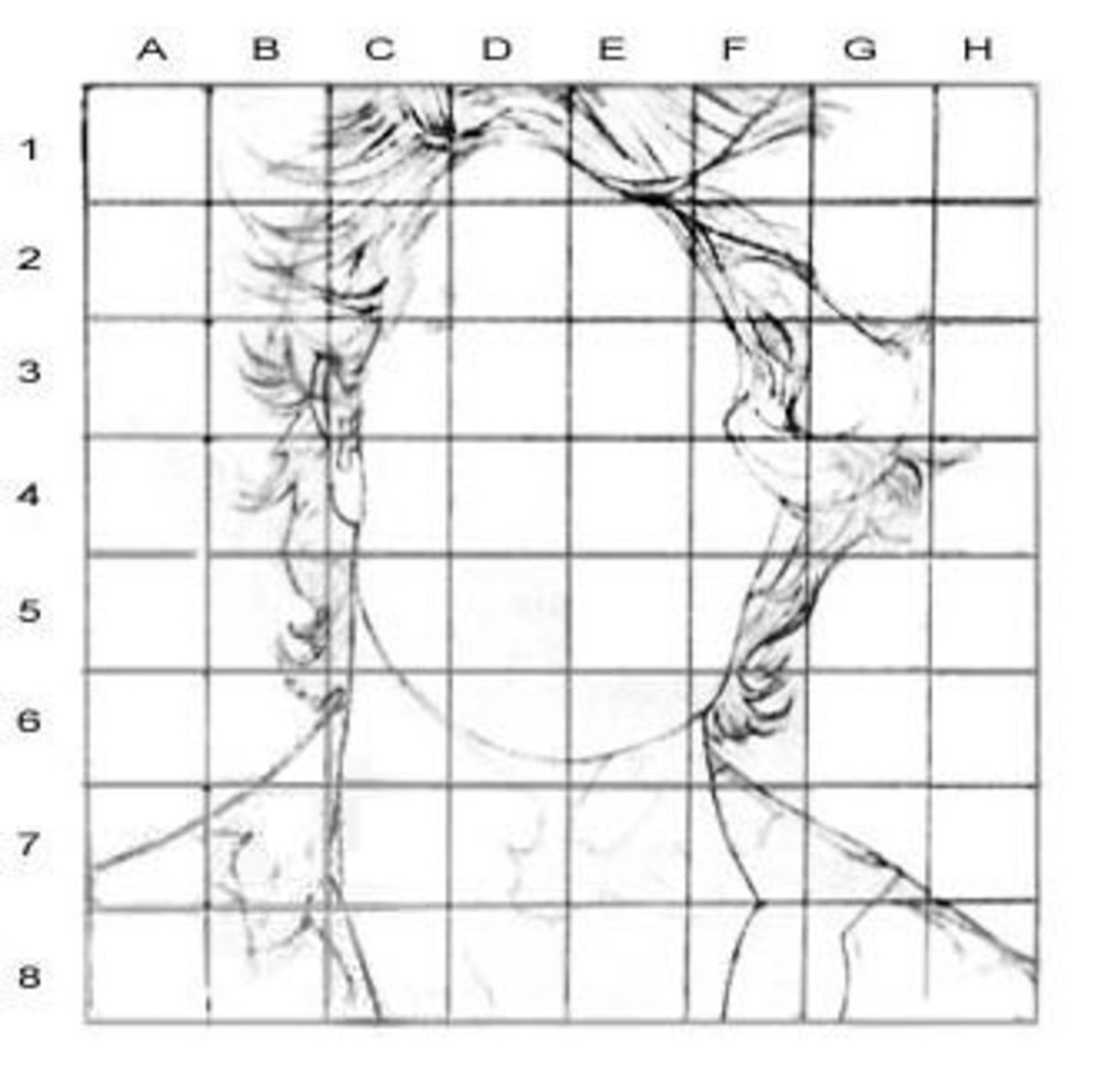 Portrait Drawing For The Ultimate Beginner The Grid Method Feltmagnet