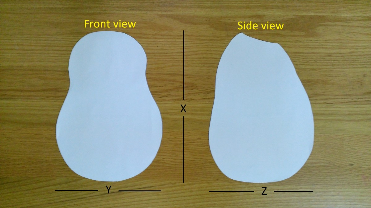 Orthographic template of the body