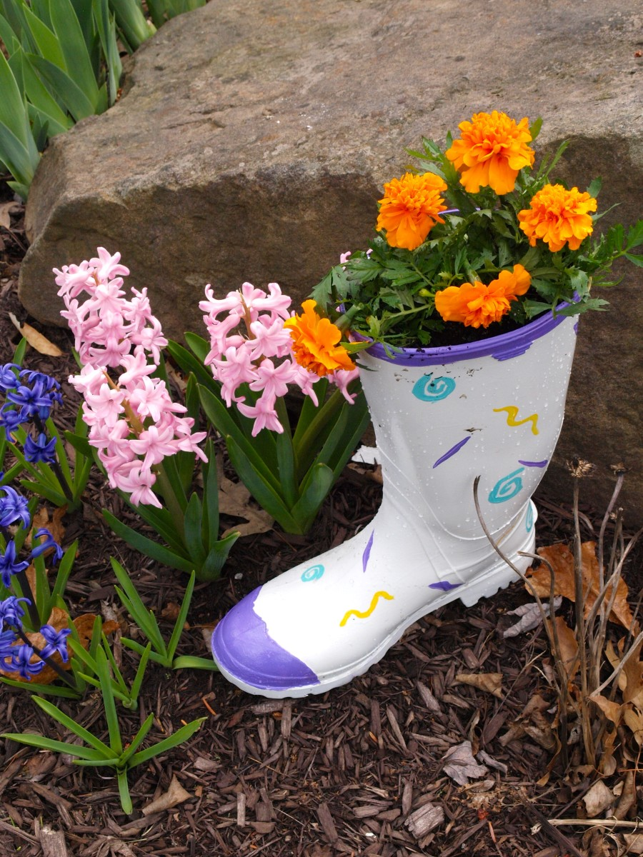 Here's my daughter's recycled boot planter filled with bright orange marigolds.