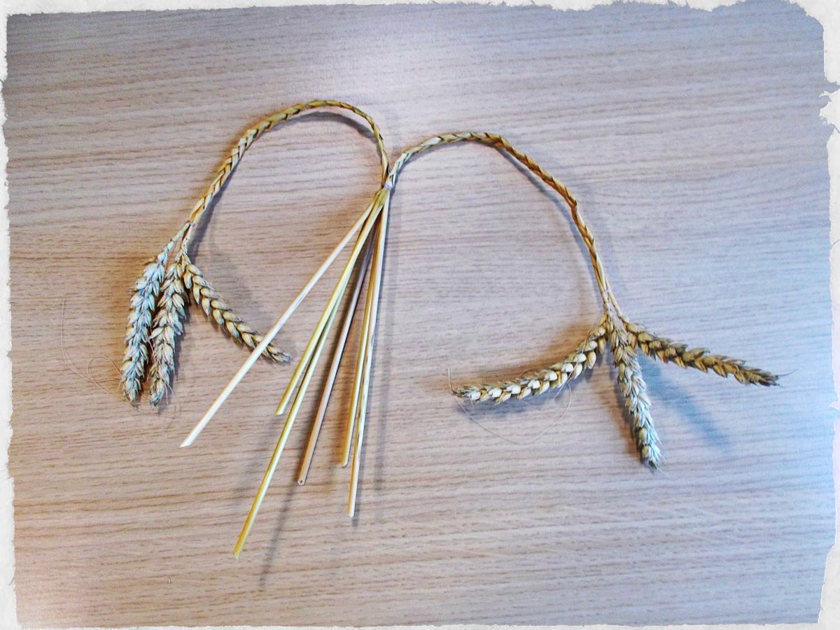 Tie both plaits together, where the straight stalks meet the plaited section.