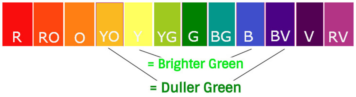 To mix a bright green, use a blue and a yellow that are close to each other on the color wheel. To mix a duller green, use a cool blue, like ultramarine, and a deep yellow, both have some red in them.