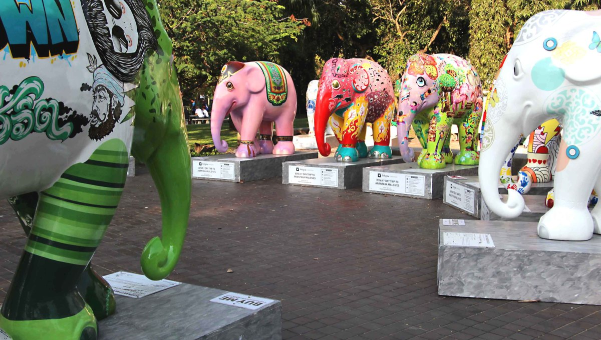 A gathering of the elephants in Lumpini Park, Bangkok