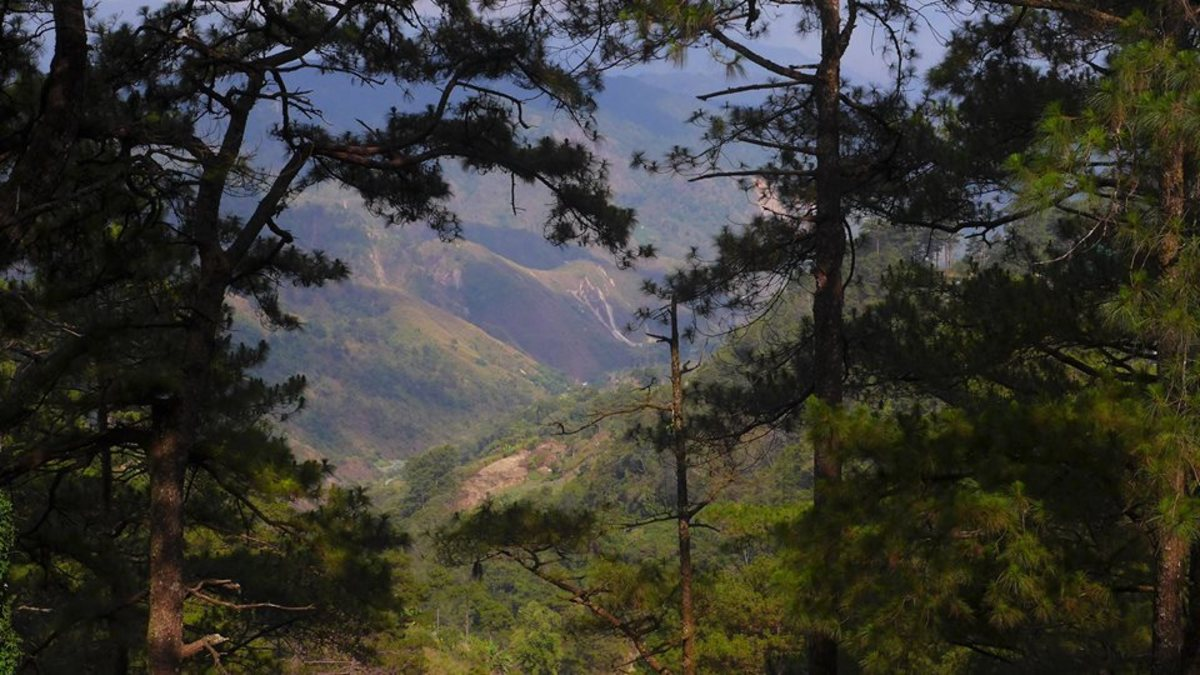Baguio 5