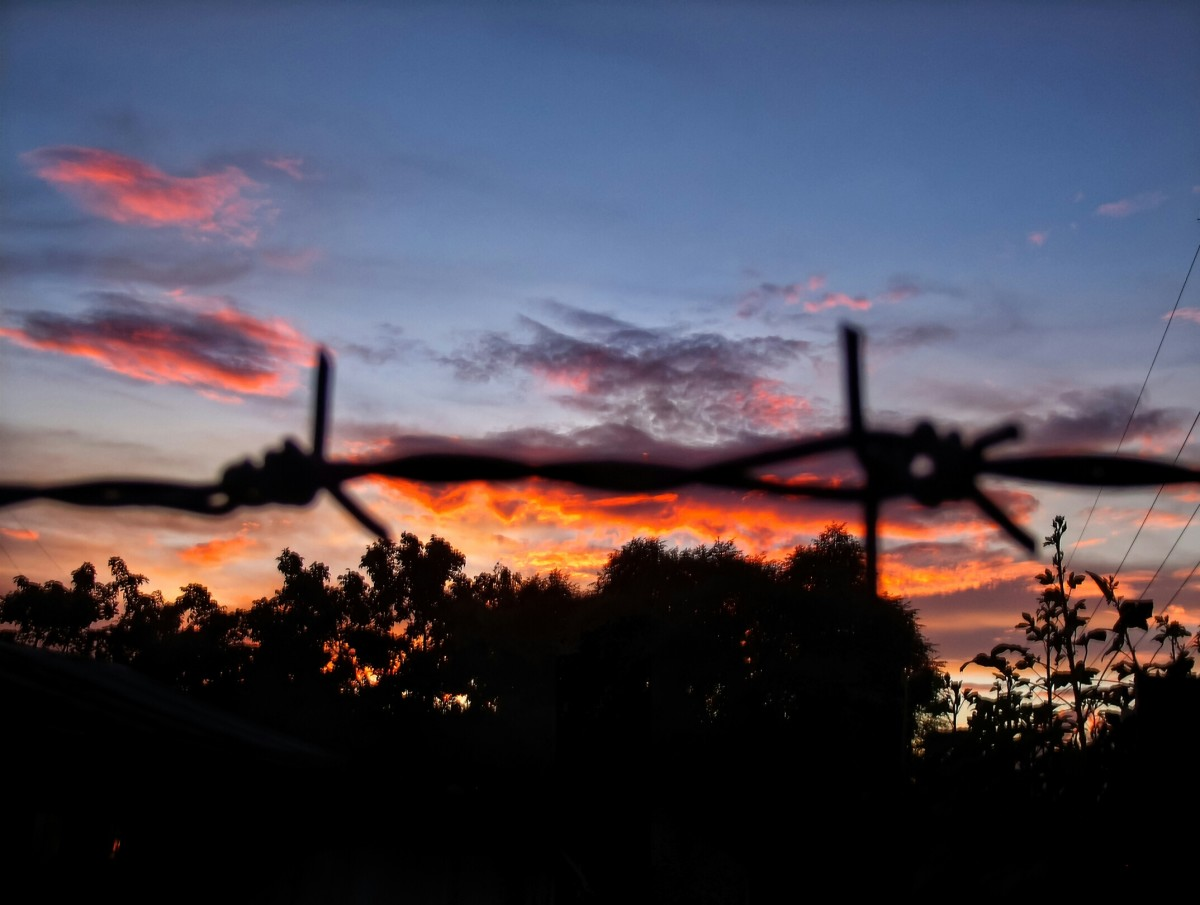 Silhouetted Barb Wire