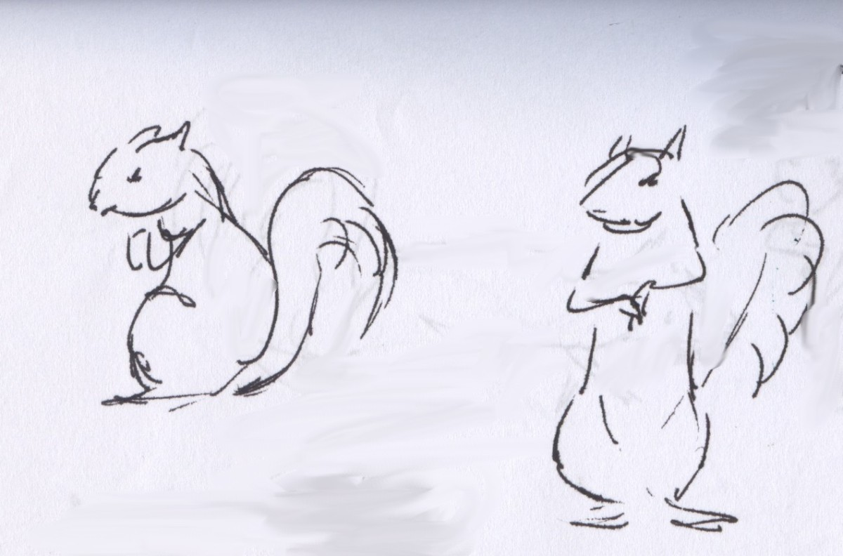 Who can resist the charm of squirrels?