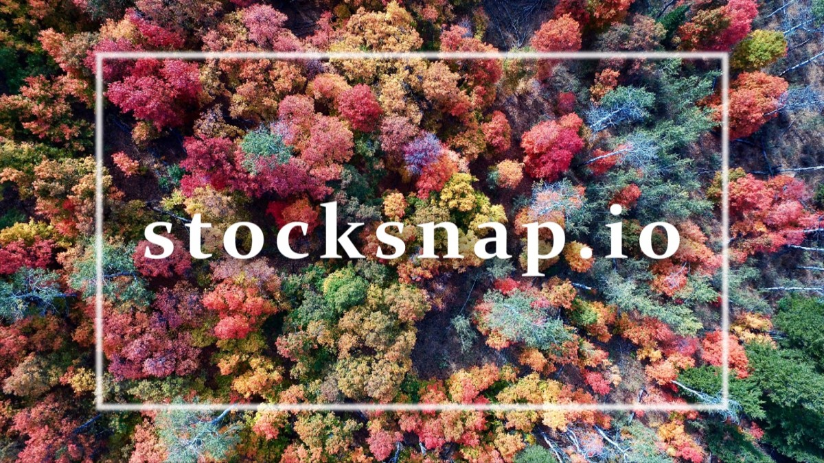 13 Sites To Get Fabulous Free Stock Images | Stock Snap
