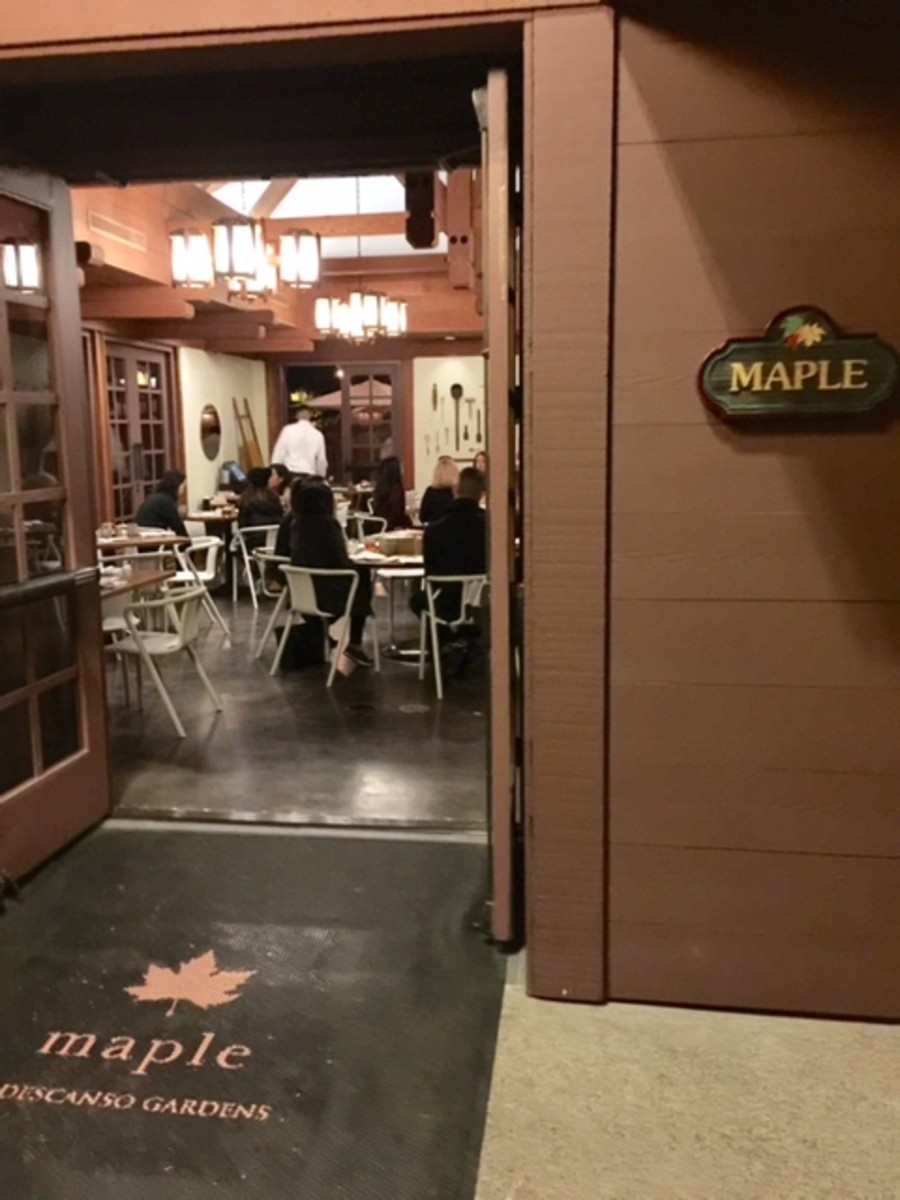 Dine at Maple before or after your enchanted experience.