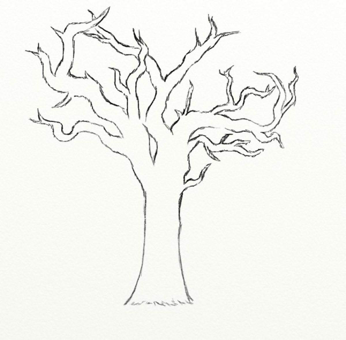 Charmant Just Draw In Some Branches To Your Tree. Try To Make Your Tree Look As Full  As Possible. There Are No Leaves So Itu0027s A Bit Bare Looking To Begin With.