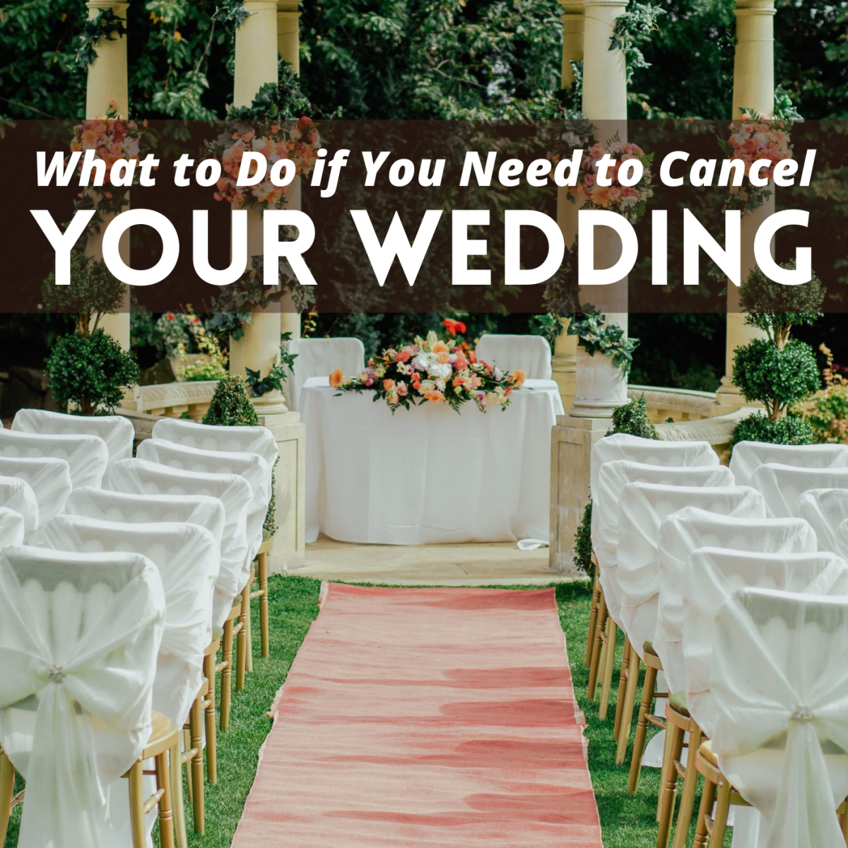 Can't afford your wedding? Thinking about canceling or postponing? Explore your options here.