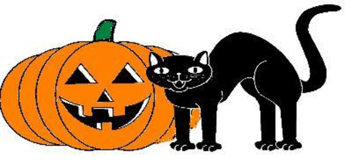 black-cats-and-halloween
