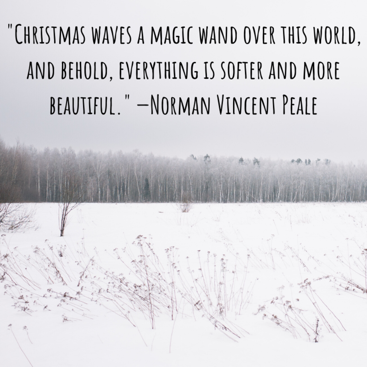 """Christmas waves a magic wand over this world, and behold, everything is softer and more beautiful."" —Norman Vincent Peale"