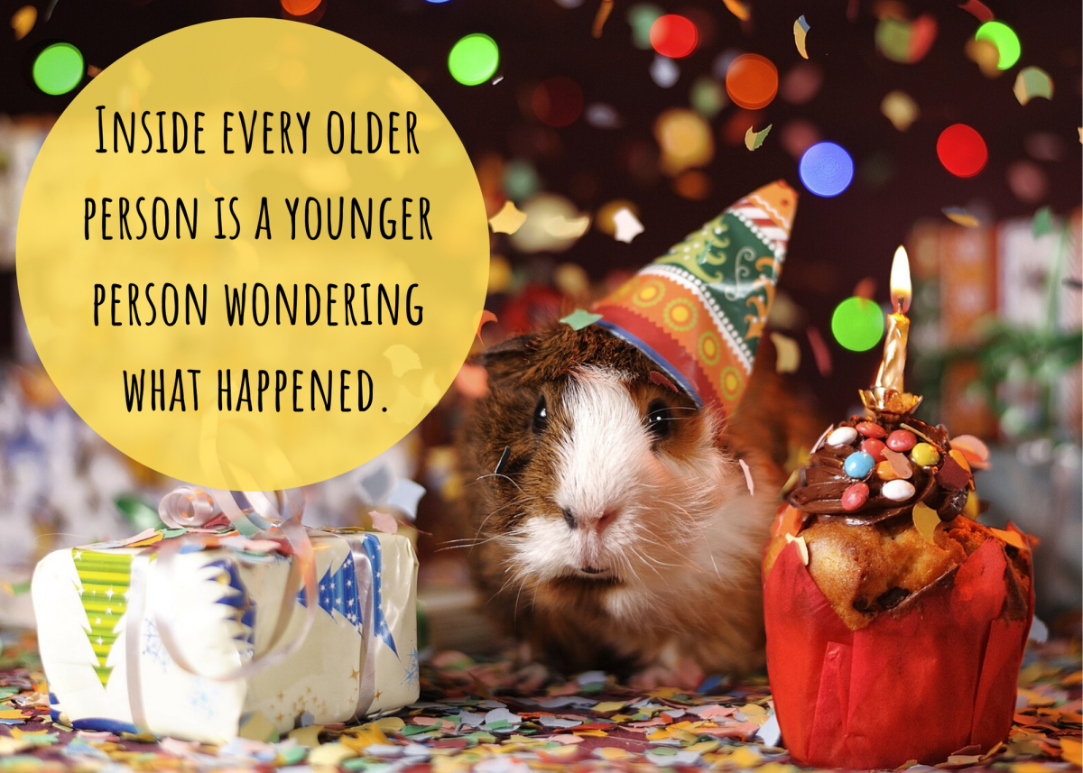 If you're sad about getting older, don't despair! Cheer up with these funny birthday jokes.