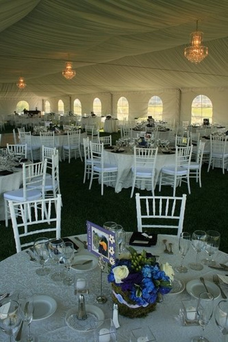 White on white on white on white. This tent is super-expensive: you've got a liner, walls, maybe a floor (can't tell), chandeliers, and white padded chiavari chairs, which are $5-10 each depending on where you're at (they don't fold or stack so they