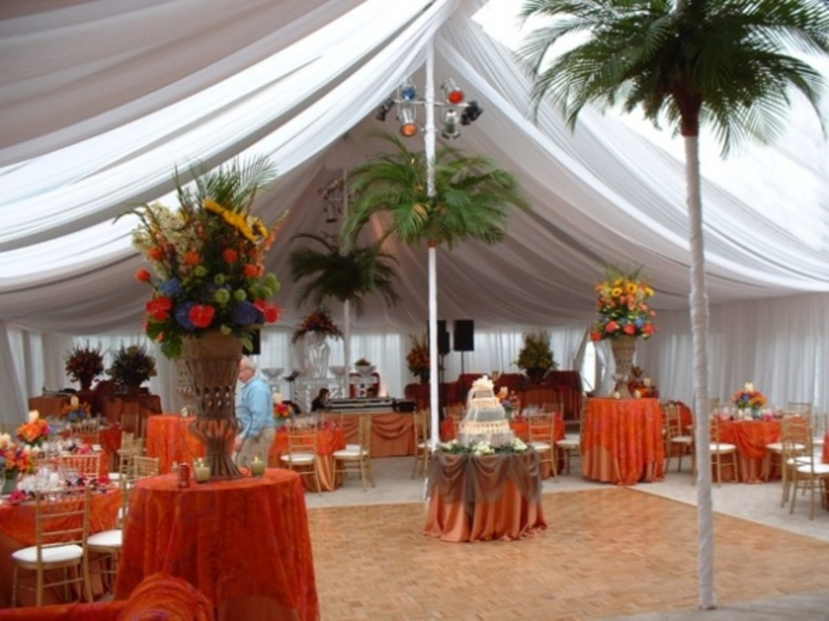 Another great way to hide the poles: disguise them as palm trees! Okay, unless your guests are stupid they will figure it out, but it's still cool.