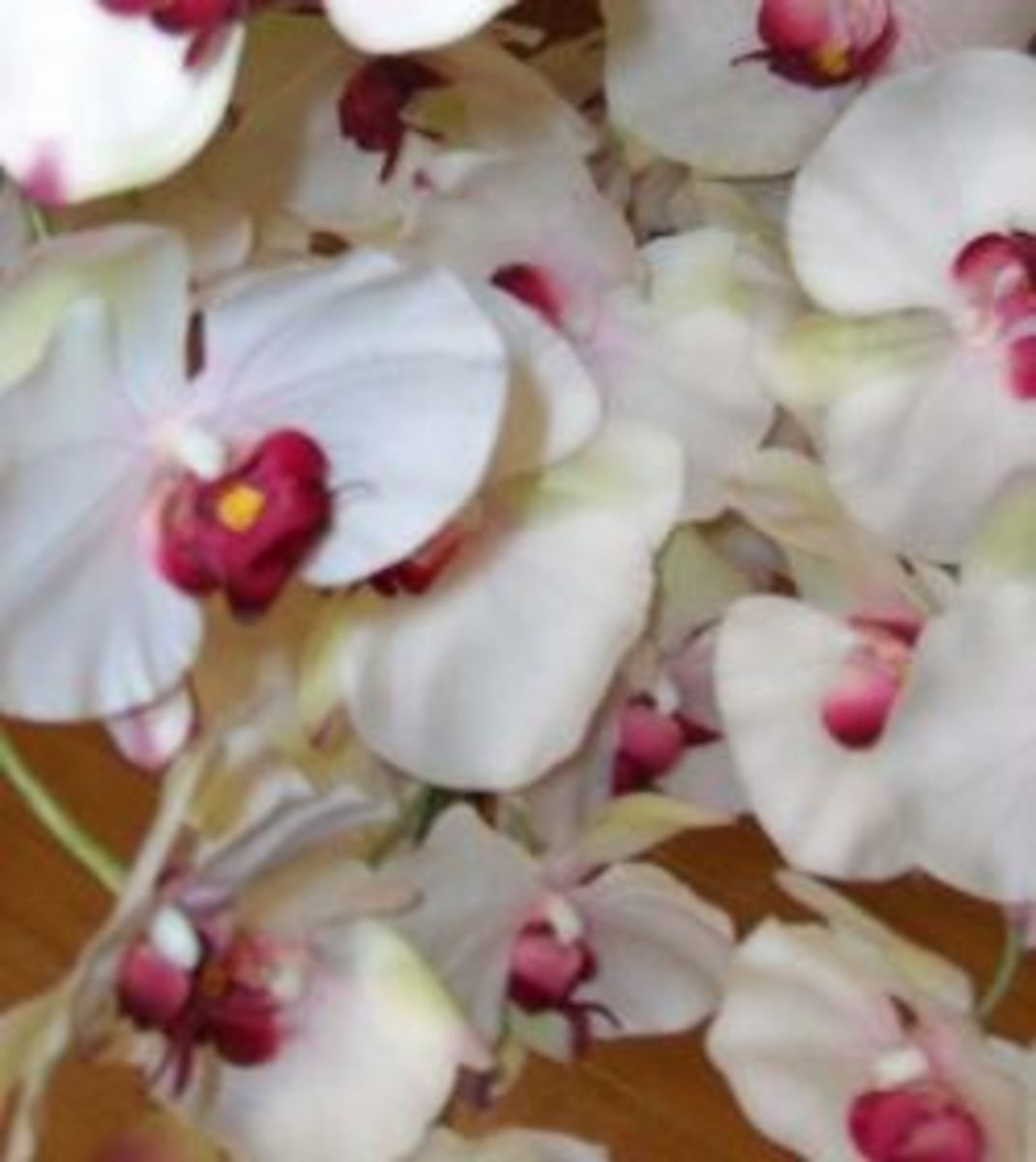 Artificial orchids on natural-looking stems with blooms and buds