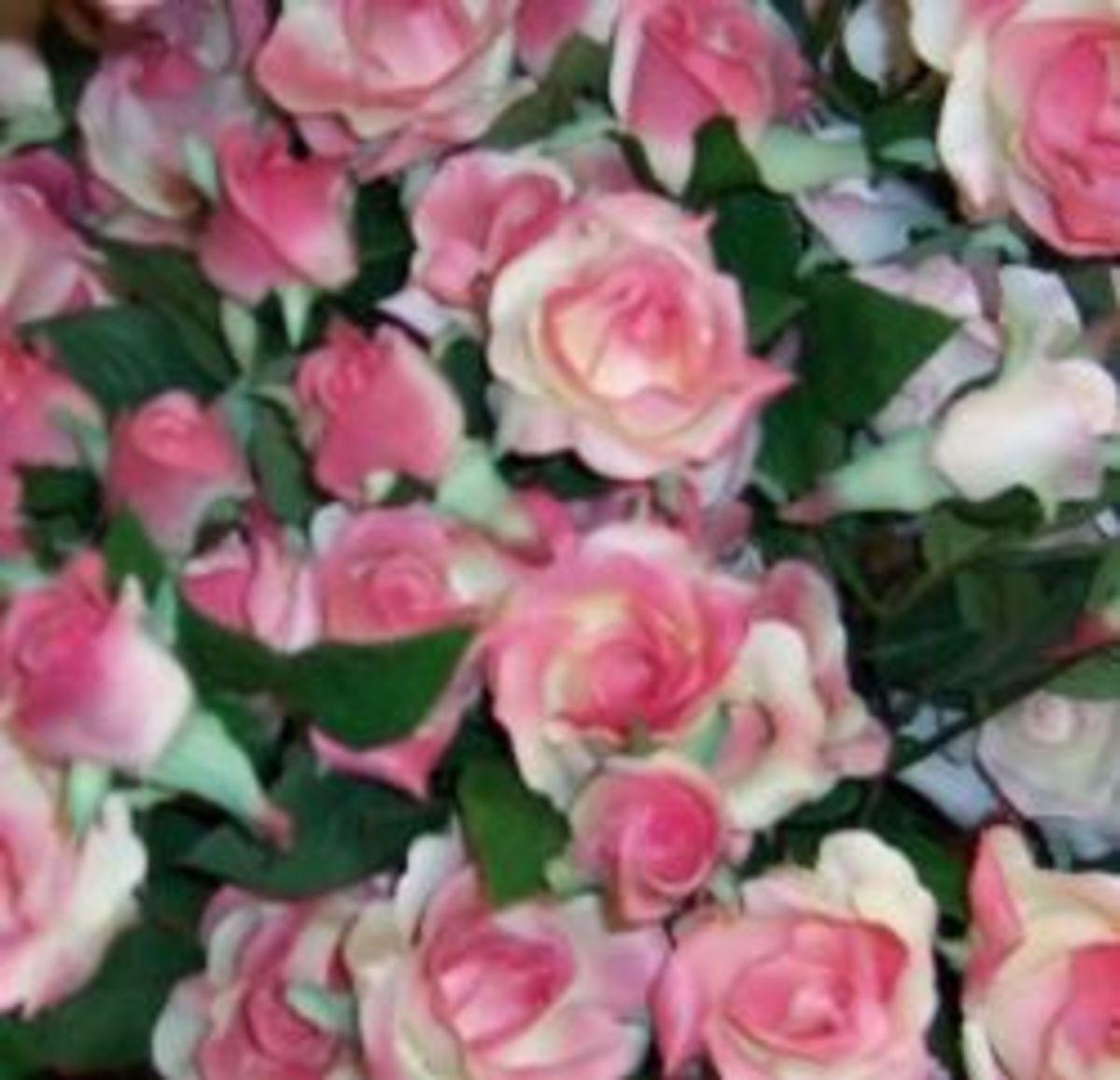 Vivid pink artificial roses