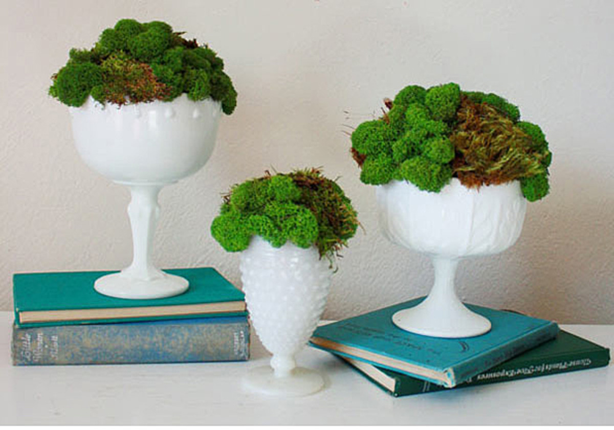 A trio of vintage milk glass vases with moss - utterly chic and super easy to make yourself.