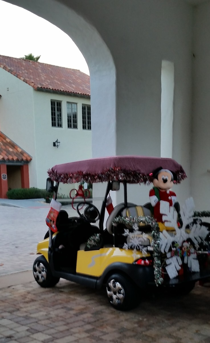 I asked the owner of this cart about how they powered the lights. She showed me the small generator/battery pack they had placed under the back seat. It's hidden by the giant snowflake. Some have a power point added linking to the cart's batteries.