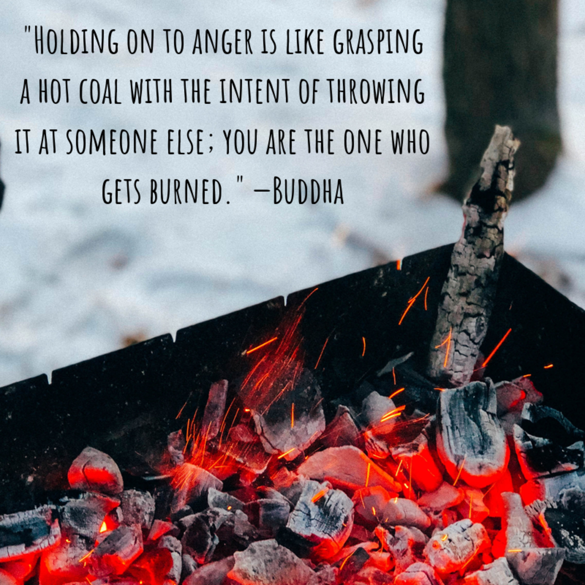 """""""Holding on to anger is like grasping a hot coal with the intent of throwing it at someone else; you are the one who gets burned."""" —Buddha"""