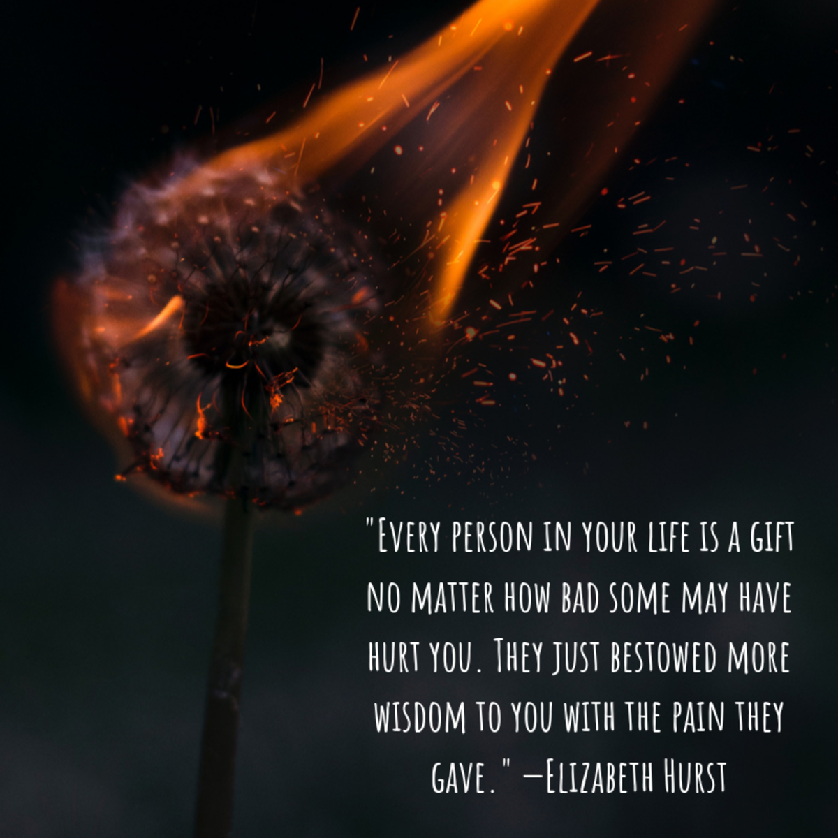 """Every person in your life is a gift no matter how bad some may have hurt you. They just bestowed more wisdom to you with the pain they gave."" —Elizabeth Hurst"