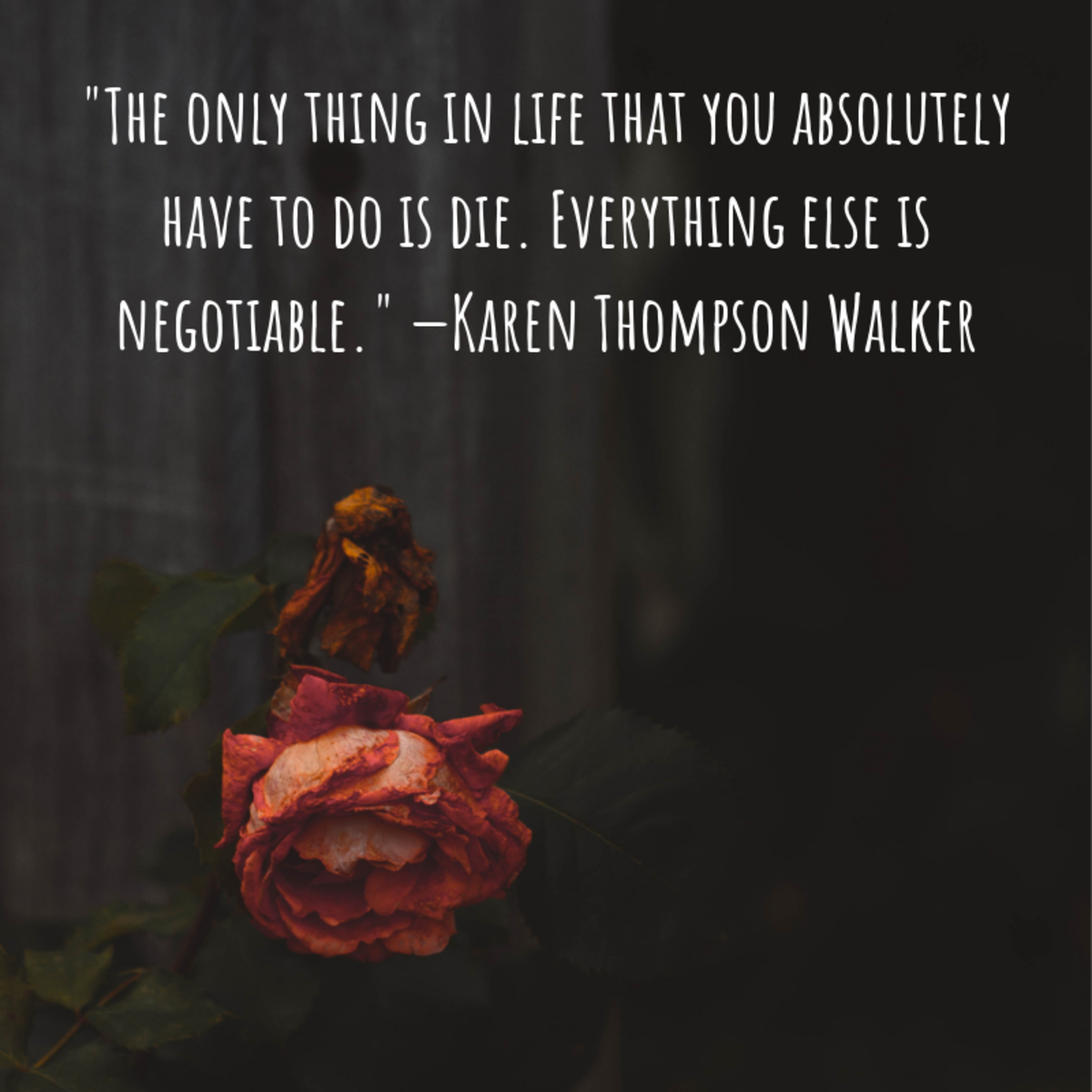 """""""The only thing in life that you absolutely have to do is die. Everything else is negotiable."""" —Karen Thompson Walker"""