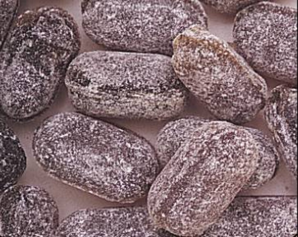 Horehound candy is an acquired taste. It is a unique item to include in a white elephant gift exchange.