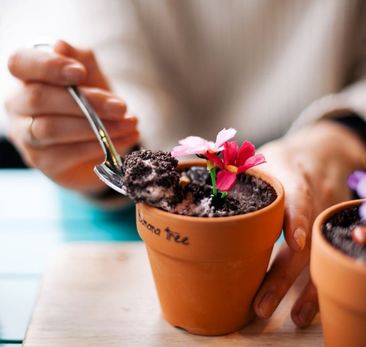 Ice cream cake in a flower pot is an easy but impressive Mother's Day gift.