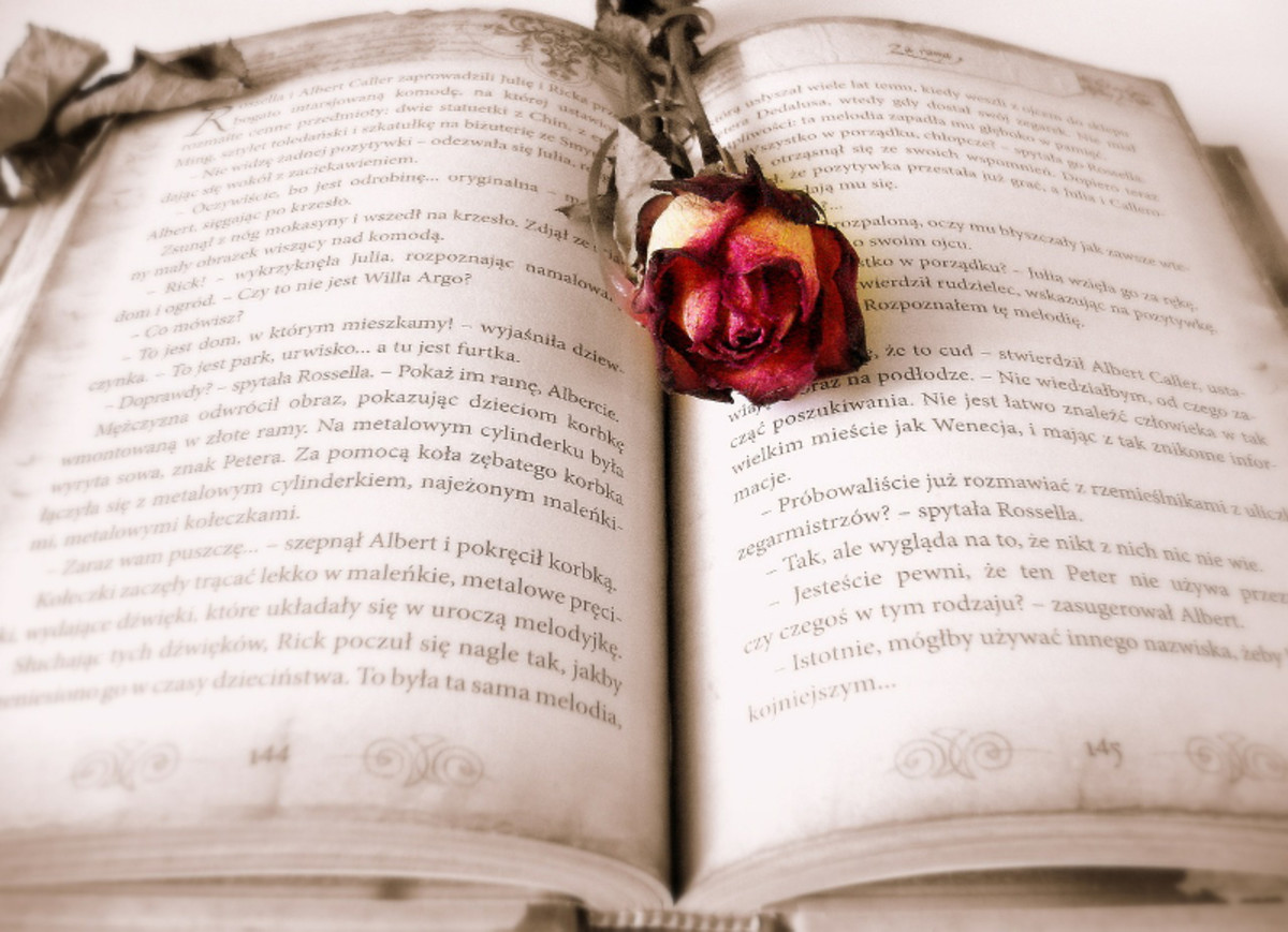 Romantic rosebud pressed between the pages of a book.