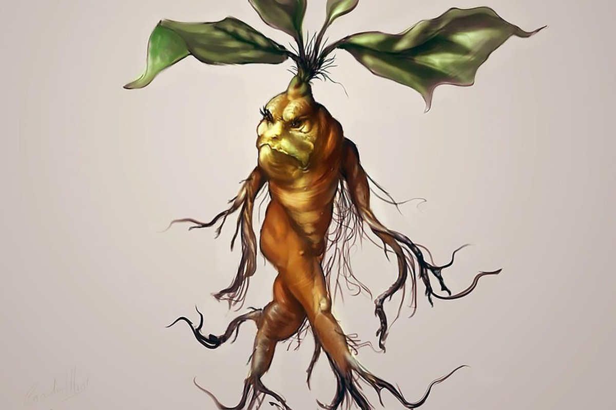 Mandrake depicted as a grumpy character of man-like features.