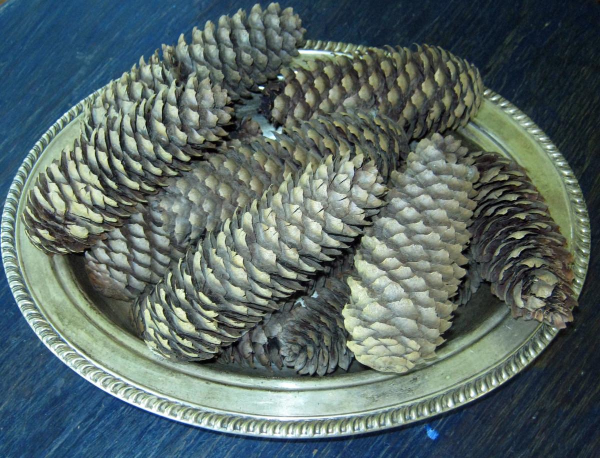 Silver Pine Cones in a Silver Bowl